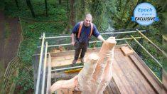 Hombre crea gigantesca escultura de una mano en árbol más alto de Gales que se dañó en una tormenta