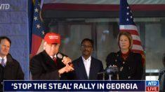 Estalla batalla en Georgia para determinar la mejor manera de tratar con el presunto fraude