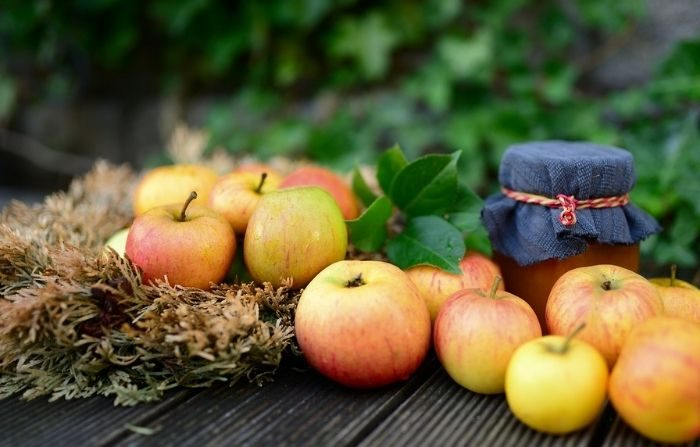 Estudios revelan que la ingesta óptima de frutas  es de 300 gramos (g) al día, lo que equivale a aproximadamente dos manzanas pequeñas. (congerdesign/Pixabay)