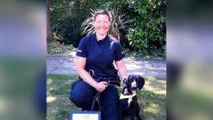 Cachorro abandonado en un balde al lado de la carretera se gradúa como perro rastreador de la policía