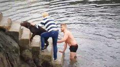 Jugador de rugby se sumerge en agua helada para rescatar un perro atrapado en un muelle en Irlanda