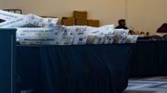 Observadores del conteo de votos en Georgia dicen que efectivamente se les pidió que se fueran a casa