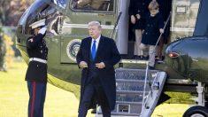 Trump se dirige a Georgia para el rally de Loeffler y Perdue, con el control del Senado en juego