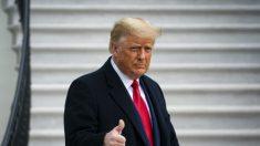 Trump: los senadores republicanos deben objetar los votos del Colegio Electoral