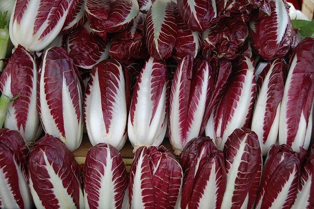Las endibias son prolíficos durante todo el invierno, difíciles de perder con sus encrespadas hojas y forma de cono. (Michel Chauvet/Wikimedia Commons)