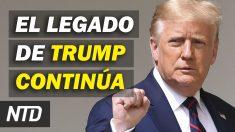 NTD Noticias: Nuevo iniciativa para continuar legado de Trump; Maricopa auditará sistemas de votación