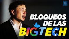 """Al Descubierto: Big tech """"árbitros de facto de la libertad de expresión"""": Musk; Signal es la app N°1"""