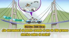 ¿Se derrumbaría un puente con un límite de 2000 libras si un ave se posara sobre el coche?