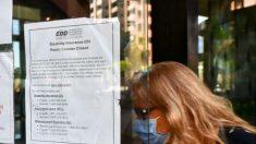 Fraude entre beneficiarios de desempleo en California podría alcanzar los USD 9000 millones