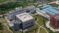 Científicos del laboratorio de Wuhan enfermaron con algo parecido al virus del PCCh en otoño de 2019