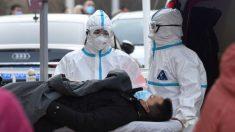 Se propaga rápidamente nuevo brote del virus del PCCh en la provincia del noreste de China