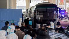 La OMS llega a Wuhan para investigar el origen del virus del PCCh y ciudadano chino critica su visita