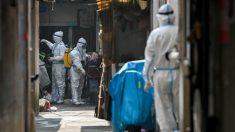 Beijing vuelve a sugerir que EE.UU. es culpable de pandemia, mientras OMS investiga origen del virus