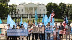 Expertos acusan al régimen chino de violar los derechos de los uigures
