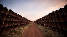 Cancelación del oleoducto Keystone XL tiene un impacto que va más allá de los trabajos afectados