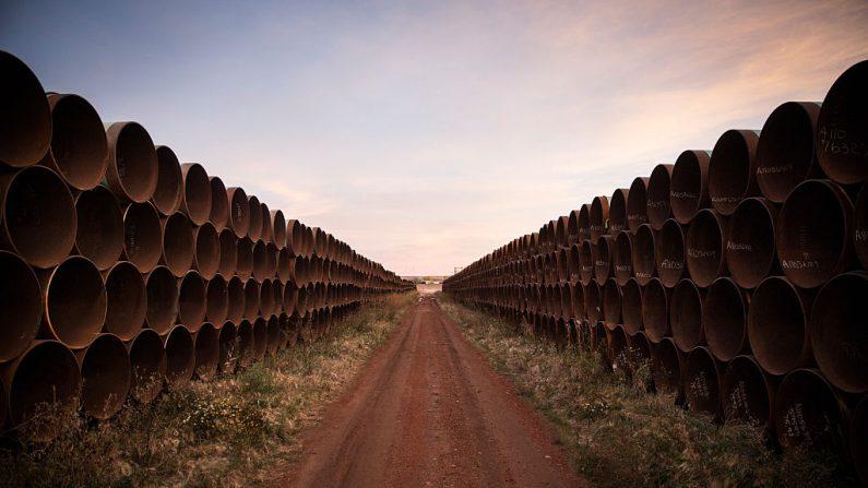 Millas de tuberías sin usar, del oleoducto Keystone XL, se encuentran en un lote, el 14 de octubre de 2014 en las afueras de Gascoyne, Dakota del Norte.  (Andrew Burton/Getty Images)