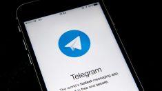 Telegram experimenta un crecimiento masivo en enero con 90 millones de usuarios nuevos