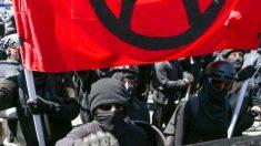 Suspenden cuentas de Twitter relacionadas con Antifa tras los disturbios del día de la inauguración