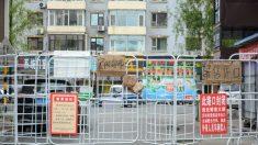 Ciudad china enfrenta crisis alimentaria tras un duro cierre por COVID-19 impuesto por las autoridades