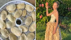 Joven crea vestido con la piel de la semilla de mango y concientiza sobre desperdicios de alimento