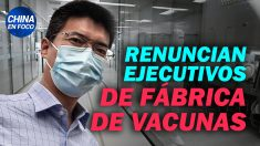 China en Foco: Renuncian altos ejecutivos de fábrica de vacunas chinas. Youtuber se arrodilla ante China