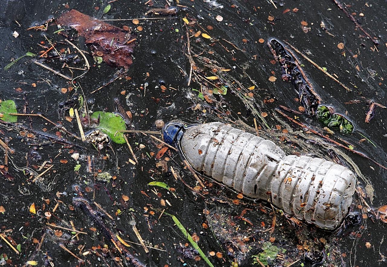 Entra en vigor prohibición de plásticos de un solo uso en Ciudad de México