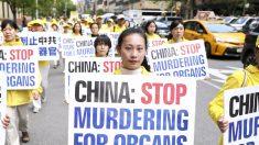 Condado de Virginia aprueba resolución que condena la sustracción forzada de órganos en China
