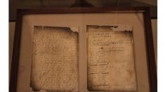 Remediación de Flushing: La Carta Magna Religiosa del Nuevo Mundo