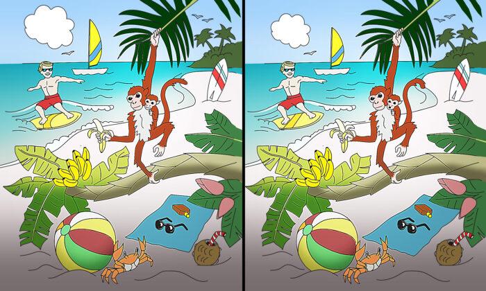 ¿Puede detectar 10 diferencias en esta escena de playa tropical? ¡Sí, nosotros también queremos ir!