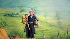 Buenas historias de China: Zengzi y la crianza de los hijos