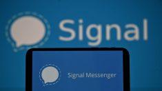 App de mensajería Signal llega a primeras posiciones en tiendas tras 1.3 millones de descargas en un día