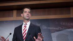 Cotton: El Senado carece de autoridad para realizar un impeachment a Trump después del 20 de enero