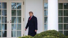 """Trump: EE.UU. está """"orgulloso"""" de Hawley y de aquellos que planean objetar los votos electorales"""