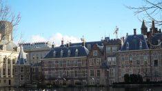 """Parlamento holandés llama """"genocidio"""" a represión del PCCh a los uigures en China"""