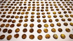 Observador de aves descubre tesoro de 1300 monedas celtas valoradas en 1176 millones de dólares