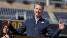 Acusan al gobernador de California, Newsom, por violar nuevamente normas de comidas bajo techo