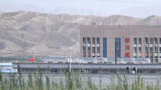Nike elige las ganancias en China por encima de los esclavos uigures