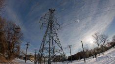Red eléctrica de Texas necesita mejor gestión y adecuación para invierno, no más control federal: experto