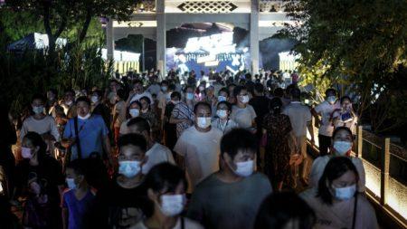 """Científico australiano de misión de la OMS cree que el virus """"inició en China"""""""
