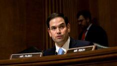 """Republicanos presentan enmiendas a resolución presupuestaria en oposición de agenda de """"reconciliación"""""""