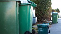 Niño de Florida se esconde en contenedor de basura y casi muere aplastado