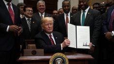 """Trump """"es la figura política más poderosa"""" en Estados Unidos, dice el senador Tim Scott"""