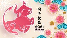Horóscopo chino: Cómo es la personalidad de los nacidos en el año del Buey