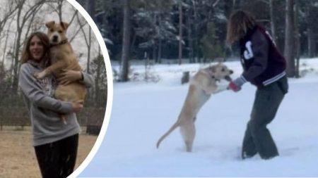 Joven sale a pasear con su perro y salva la vida de un niño que cayó a un lago congelado en Texas