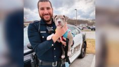 Policía de Nueva Jersey rescata a un cachorro de pitbull sin hogar y lo adopta el mismo día