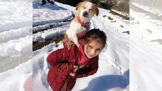Niña carga a su perro enfermo sobre su espalda y camina 2.5 km en la nieve para llevarlo al veterinario