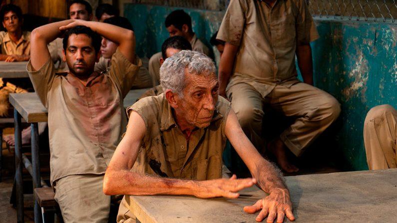 """Extracto de la película """"Plantados"""", dirigida por Lilo Vilaplana. El largometraje se estrena este 12 de marzo en el Miami Film Festival (Cortesía de Centurion Films y Vilaplana Films)"""