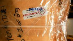 El fentanilo está entrando a Estados Unidos en cantidades récord