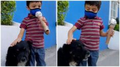 """Niño hace tierno reportaje sobre perritos callejeros y su entrevista a """"Negrito"""" se vuelve viral"""