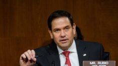 Trump respalda al senador de Florida Marco Rubio